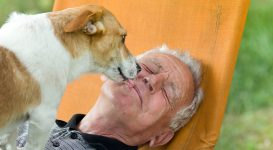 How Pets Can Help Those With COPD